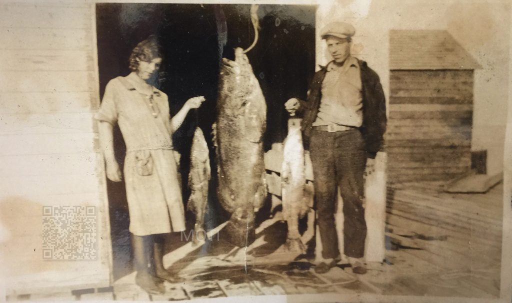 Pine Island Fishing