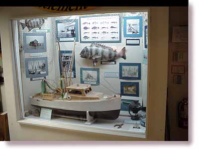 Shrimp boat replica, Sheepshead fish and other items from earlier Pine Island life.
